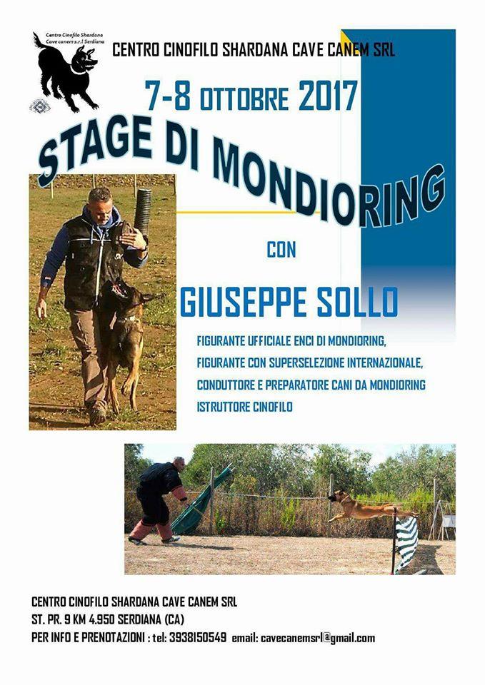STAGE DI MONDIORING  CON GIUSEPPE SOLLO